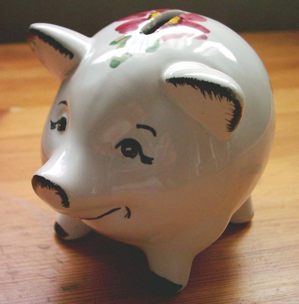 Piggy Bank for Saving